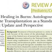 epidermal healing in burns