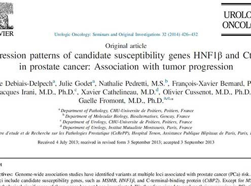 HNF1β prostate cancer