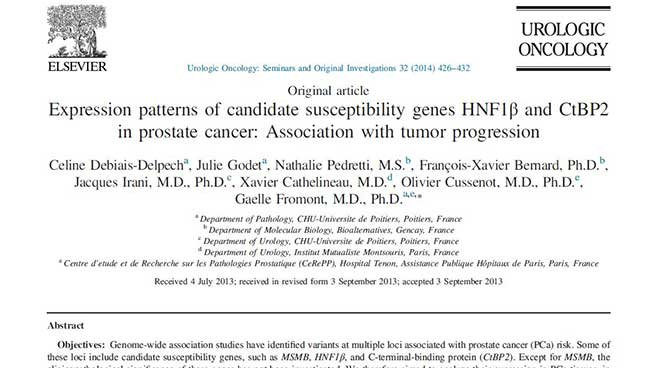 HNF1β prostate cancer