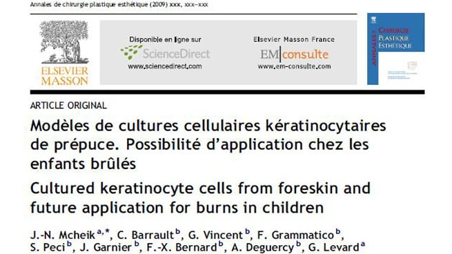 Cultured keratinocyte cells from foreskin