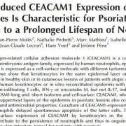 CEACAM1