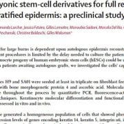 Human embryonic stem cell derivatives