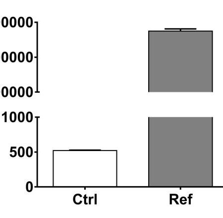 ICAM-1 expression#Ref