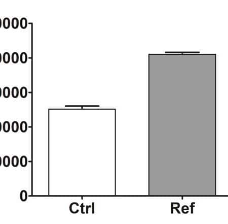 CD44 expression