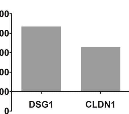 Calcium-induced gene expression
