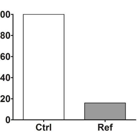 DHT testosterone ratio