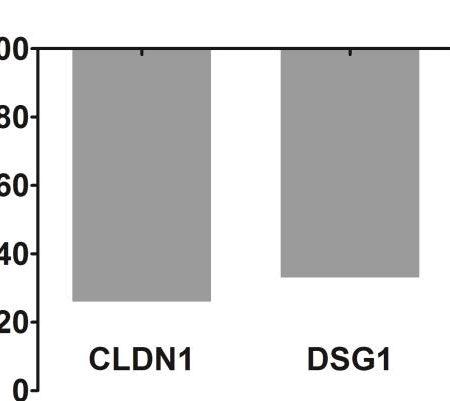 Retinoic acid-induced gene expression