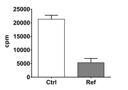 T cell proliferation