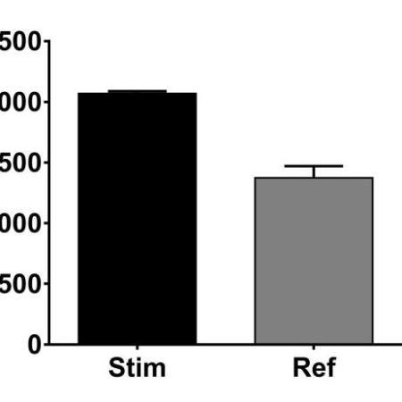 PPAR-gamma expression analysis#Ref