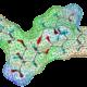 Profiling phytochimique et métabolique