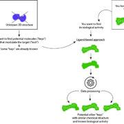 Screening virtuel in silico basé sur le ligand ou la strucutre de la protéine cibleches