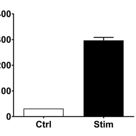PMN-0011_OSM release#Stim