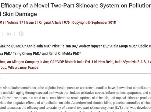 Pollution-Induced Skin Damage